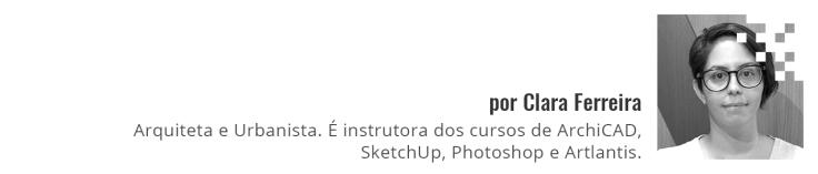 clara_assinatura_wordpress